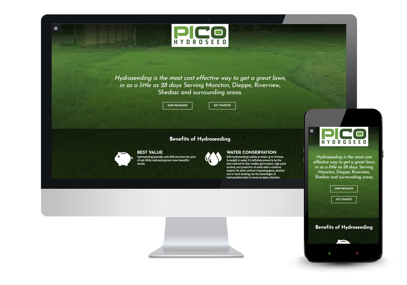 PiCo Hydroseed Website